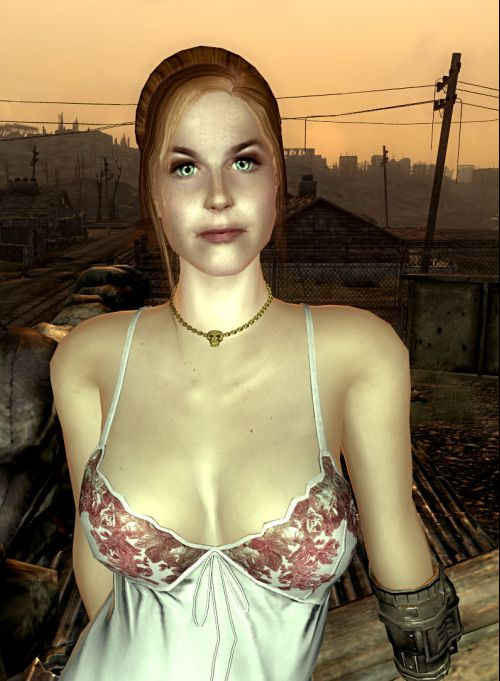 Fallout 3 Высший Паладин Кросс
